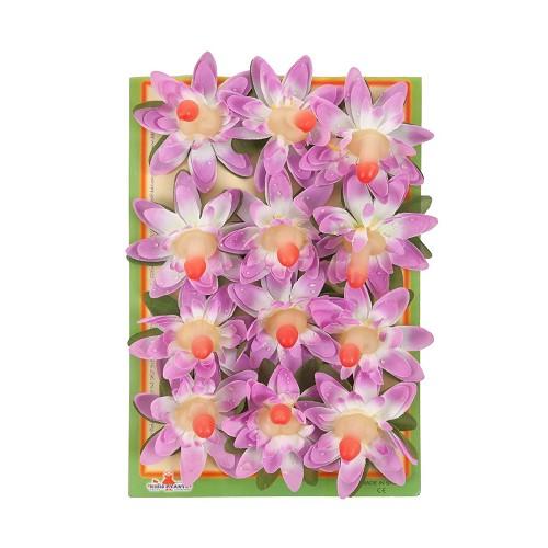 Fleur de fluor orchidée