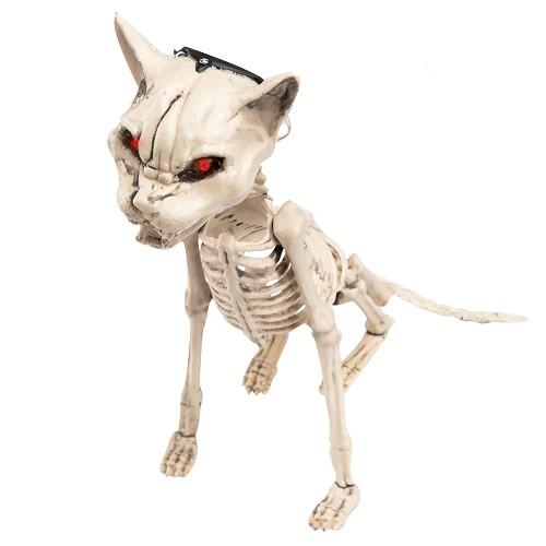 Esqueleto De Gato Con Luz