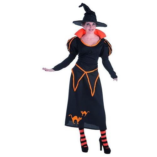 Costume adulte sorcière de Carol